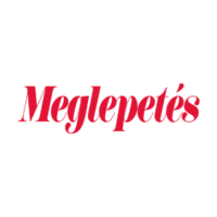 Média logó – 13